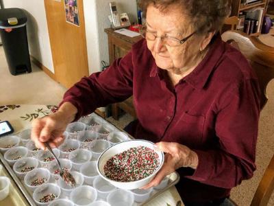 decorating cookies - Sylvia Riter